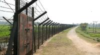 Bangladeshi man killed by BSF in Jhenidah