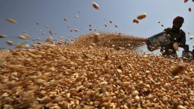 Bangladesh to import another 50,000 tonne wheat