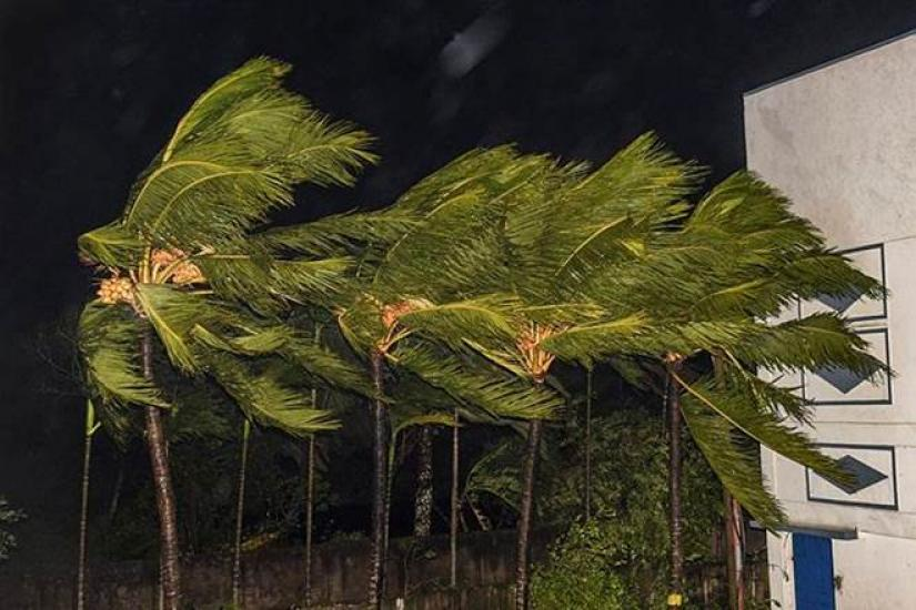Trees sway as heavy wind induced by Cyclone Bulbul hits Bakkhali in South 24 Parganas district in Indian state of West Bengal on Saturday (Nov 9). PHOTO/PTI